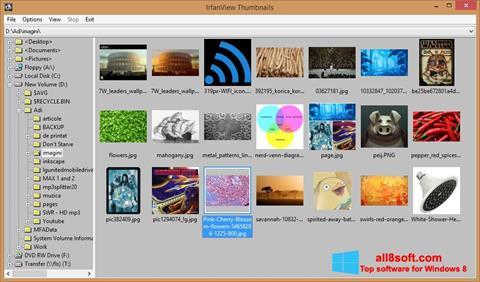 스크린 샷 IrfanView Windows 8