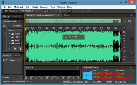 스크린 샷 Adobe Audition CC Windows 8