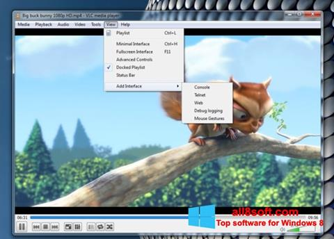 스크린 샷 VLC Media Player Windows 8